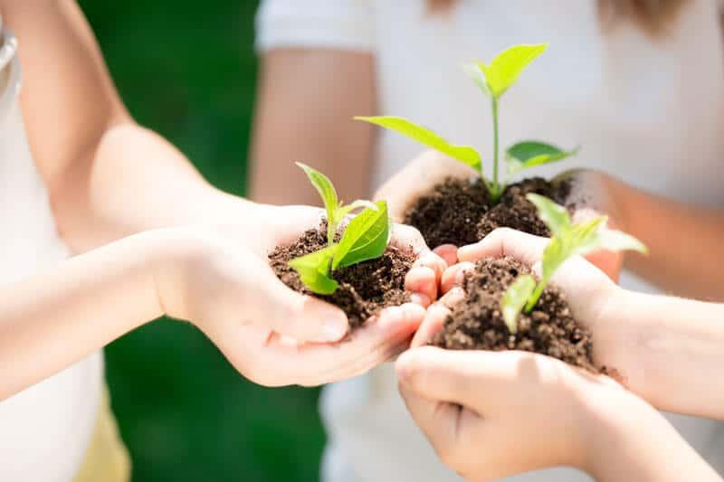 nachhaltige team events mit teamio
