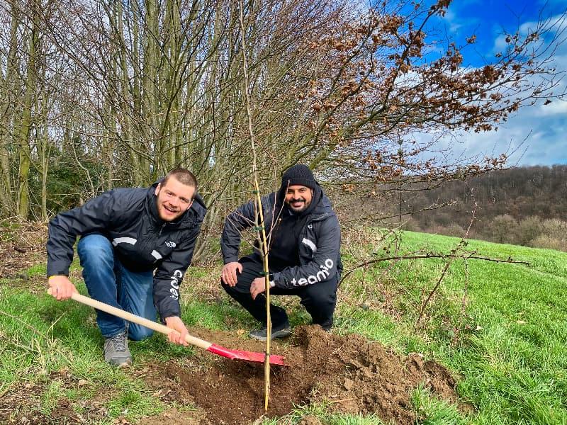 Nachhaltige Teamevents: Teamio Event GmbH pflanzt 187 Eichen in Essen